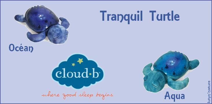 Tranquil Turtle (Cloud B) : APAISE BÉBÉ